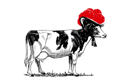 Kuh mit Bollenhut